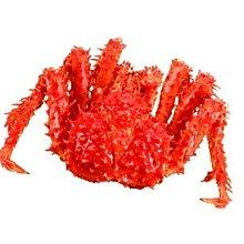 【萬象極品】帝王蟹/約2.5kg以上/隻 蟹肉紮實鮮甜滋味讓人吮指回味 來犒賞自己~數量有限