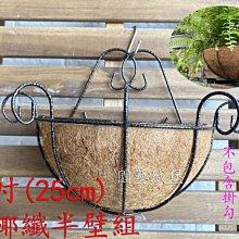 【園藝城堡】 10吋(25cm) 硬椰纖半壁組 歐式硬椰纖壁掛組  椰纖吊盆 吊盆 吊籃