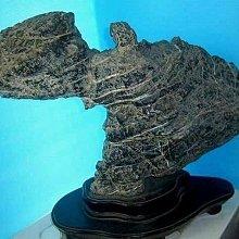 金牛礦晶 『南投埔里-黑膽奇石』vqq-12