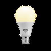 檯燈照明/燈飾