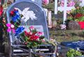Restored vandalised graves in Papakura