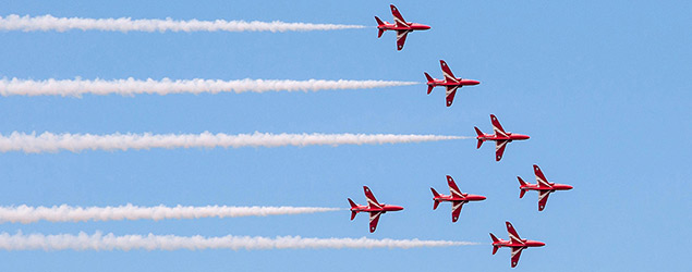 Seagull photobombs the Red Arrows (SWNS)