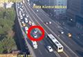 WATCH: Lone bird calmy crosses highway