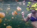 WATCH: Brave snorkeler swims with jellyfish