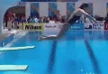 VIDEO: Diver's attempt goes terribly wrong
