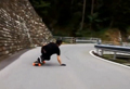 WATCH: Crazy skateboarder's journey down Swiss valley