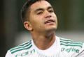 Verdão derrota o Fluminense e segue firme na ponta