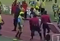 WATCH: Huge brawl erupts on field after ref punched