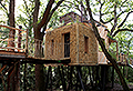 VIDEO: Take a tour of this luxury $200k treehouse