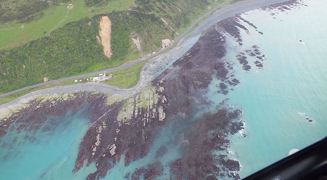 Another Earthquake in New Zealand Seabed2
