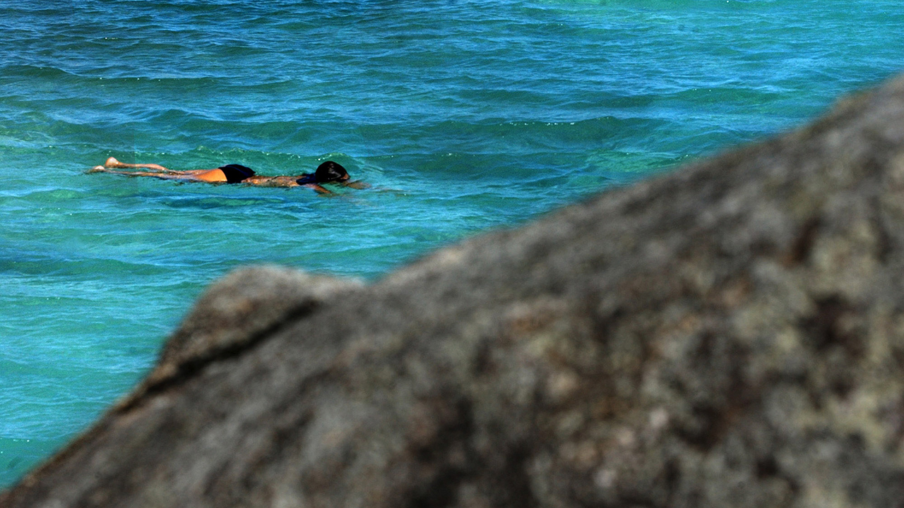 Great Barrier Reef deaths of French tourists on dive trip under investigation
