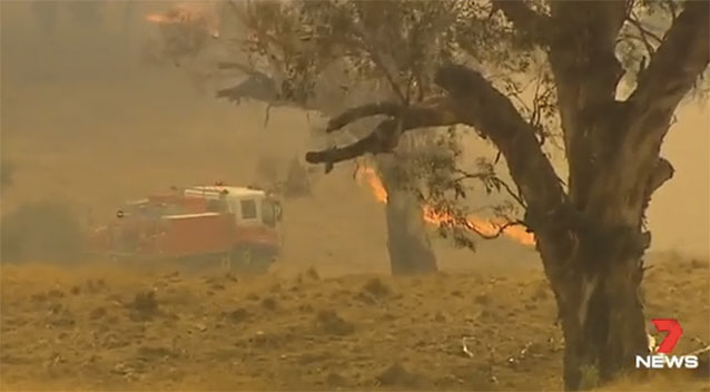 At least 15 homes lost in New South Wales fire