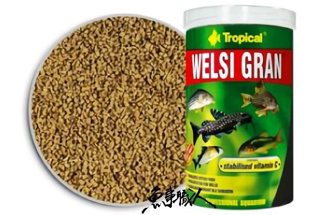 波蘭Tropical德比克Welsi Gran抗緊迫鼠魚.底棲魚主食100ml魚事職人