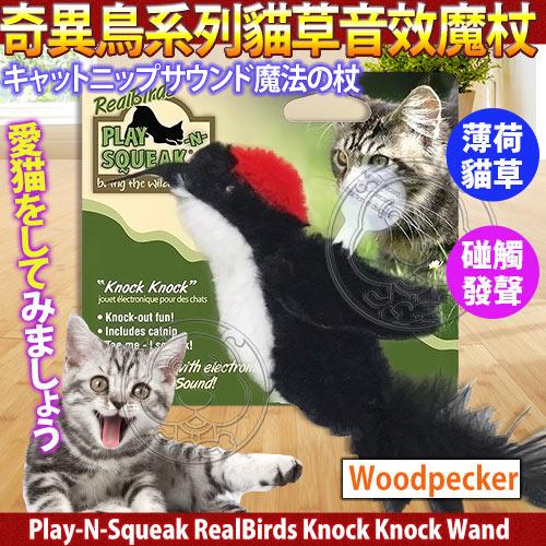 zoo寵物商城美國Play-N-Squeak狂野森林奇異鳥系列貓草音效魔杖-啄木鳥
