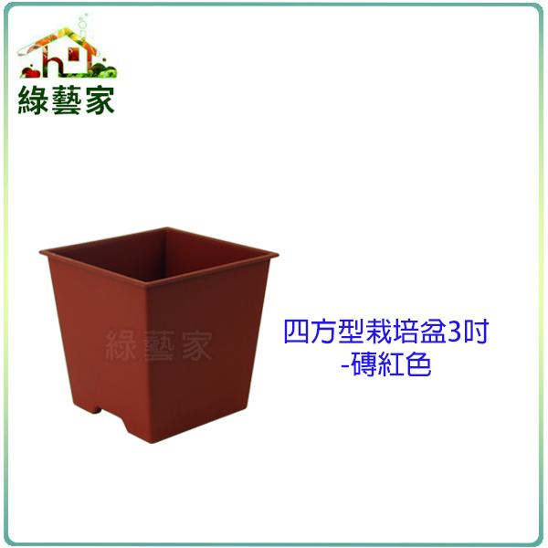 綠藝家005-D110-RE四方型栽培盆3吋-磚紅色厚
