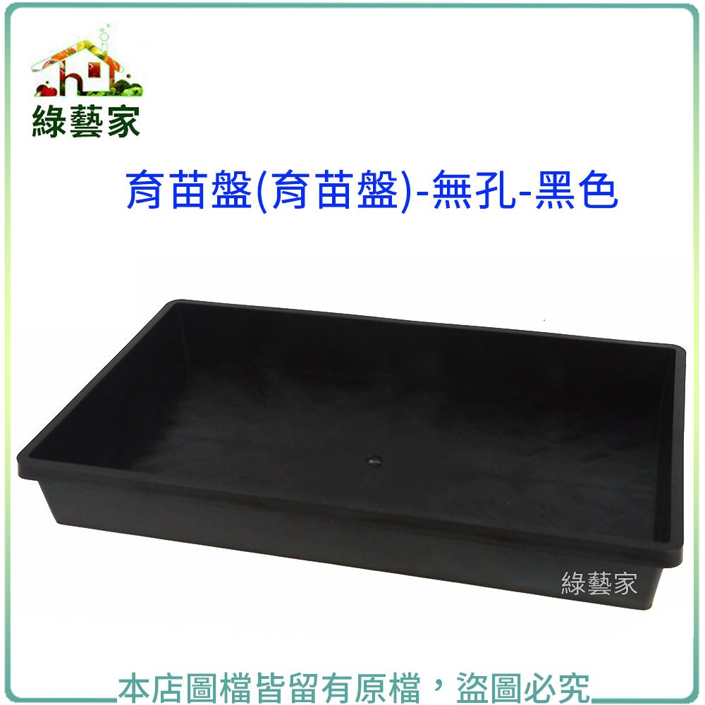 【綠藝家】育苗箱(無孔)-黑色(育苗盤.芽菜箱.可當四方型栽培盆端盤)
