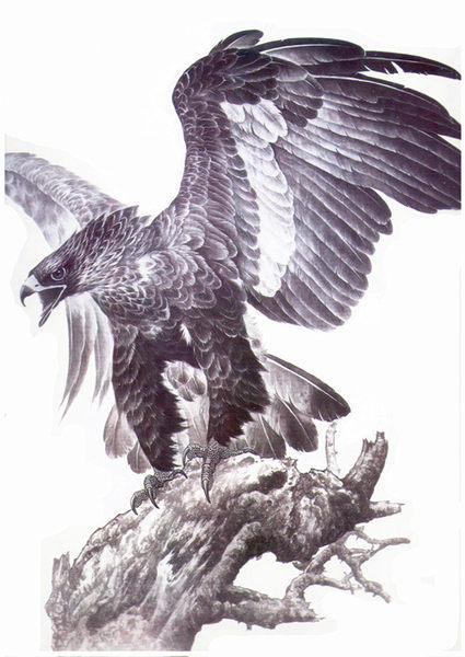 薇嘉雅老鷹飛揚大圖經典圖案紋身貼紙MQB12