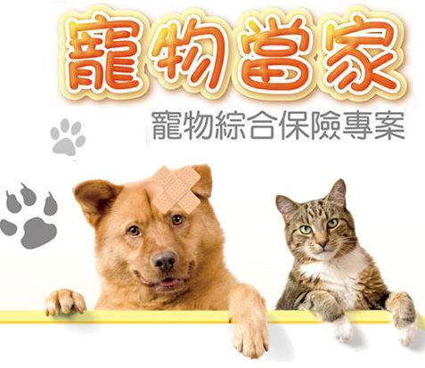 寵物當家寵物綜合保險專案