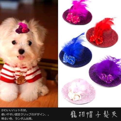 【 zoo寵物商城】時尚寵物帽子髮夾 (2入可選性別 顏色隨機出貨)