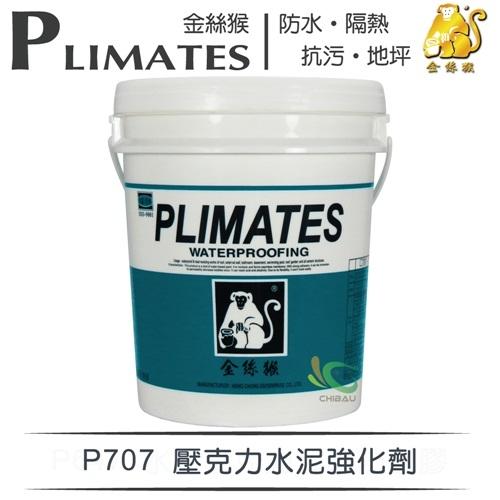 【漆寶】金絲猴│壓克力水泥強化劑P-707(5加侖裝)