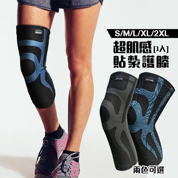 BodyVine 巴迪蔓 運動壓縮護膝腿套 超肌感貼紮護膝 1隻