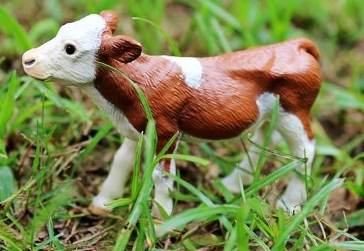 協貿國際野生動物塔爾小牛模型
