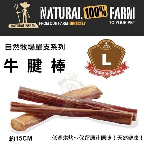 『寵喵樂旗艦店』自然牧場100%Natural Farm自然牧場單支系列《牛腱棒-L》犬用零食