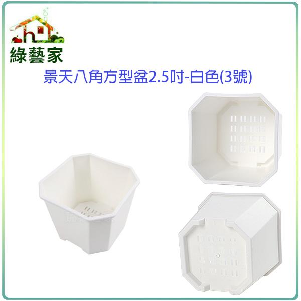 【綠藝家】景天八角方型盆2.5吋-白色(3號)