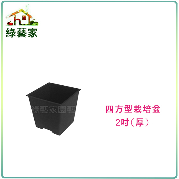 綠藝家四方型栽培盆2吋-黑色厚