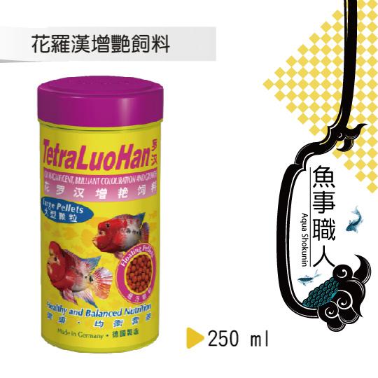 德彩 Tetra 花羅漢增艷飼料(大顆粒)【250ml】促進前額隆起 爆頭飼料 高蛋白增豔 T530 魚事職人