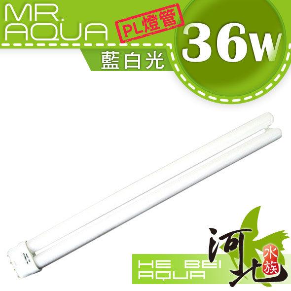 河北水族MR.AQUA PL燈管藍白光36W