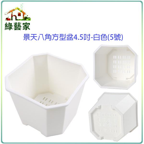 【綠藝家】景天八角方型盆4.5吋-白色(5號)