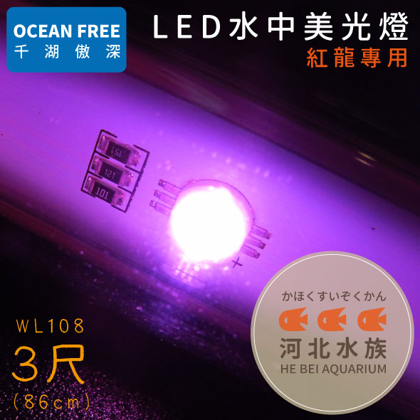 河北水族OF傲深LED水中美光燈紅龍3尺86cm WL108 LED水中燈水中LED燈三尺