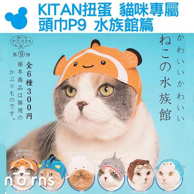 NORNS KITAN扭蛋貓咪專屬頭巾P9水族館篇日本轉蛋貓泥棒頭套小丑魚尼莫NEMO朵莉鯊魚水獺企鵝
