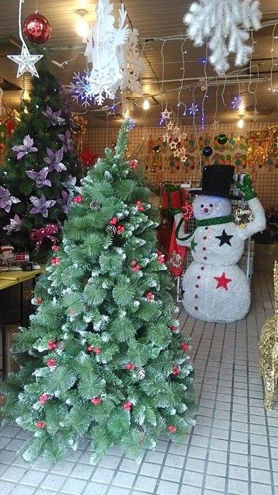 4呎PVC尖頭紅果松針樹(裸樹)120CM高 聖誕節 聖誕襪聖誕帽聖誕燈聖誕金球聖誕服聖誕蝴蝶結花