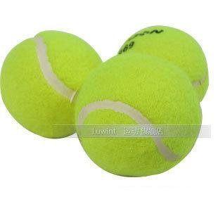 網球訓練初級比賽用球練習球5個價