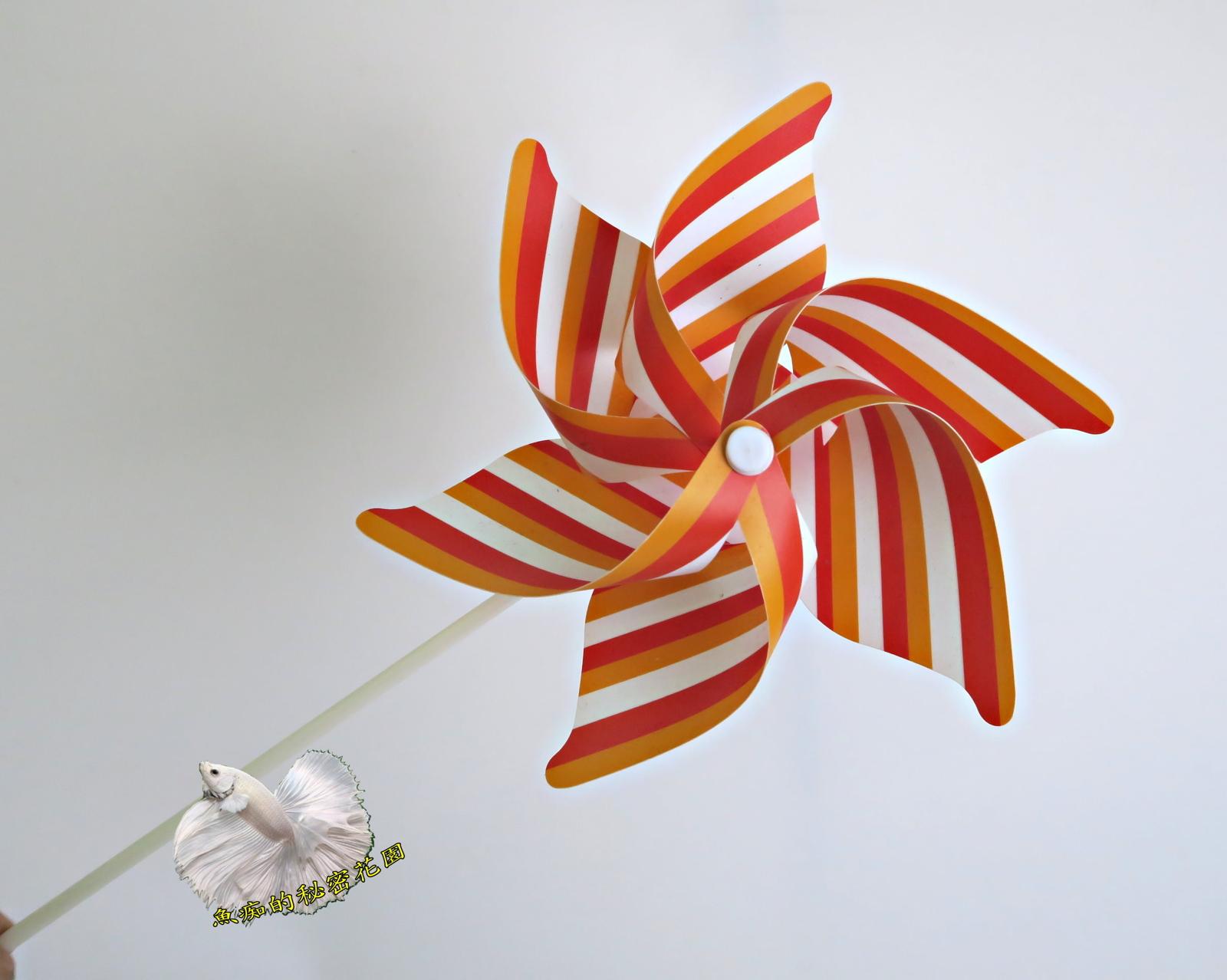 特價品彩色條紋小風車童玩.玩具風車.卡通風車庭院裝飾.居家.店面.大廳擺飾