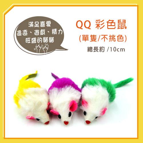 【力奇】QQ 彩色鼠(單隻)  (WE220193)-20元 【隨機出貨,恕不挑色】 可超取(I002E48)