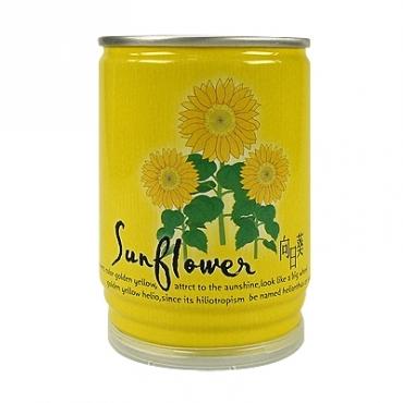 易開罐頭花卉蔬果(向日葵)