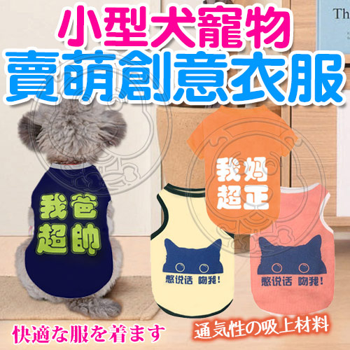 zoo寵物商城dyy小型犬寵物賣萌創意衣服