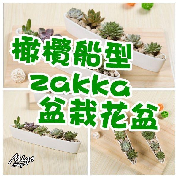 【橄欖船型zakka盆栽花盆《白色/長25.5cm》】多肉盆栽簡約白色創意迷你多肉陶瓷