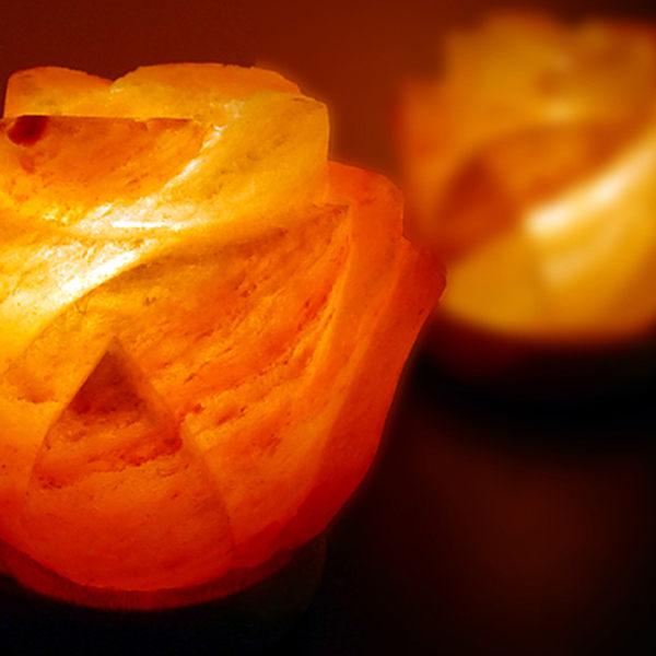 鹽燈 [Naluxe] 時尚開運水晶鹽燈-花開富貴對燈(1對2入)