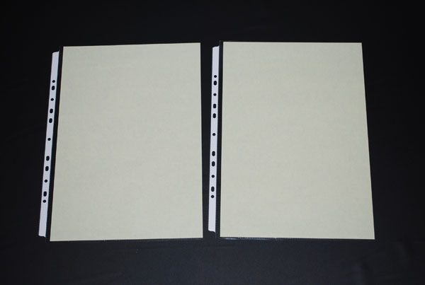 [鼎盛] 608-8K-11孔PP真珠條內頁附紙10張/包