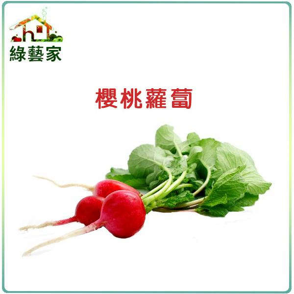 綠藝家C05.櫻桃蘿蔔種子200顆