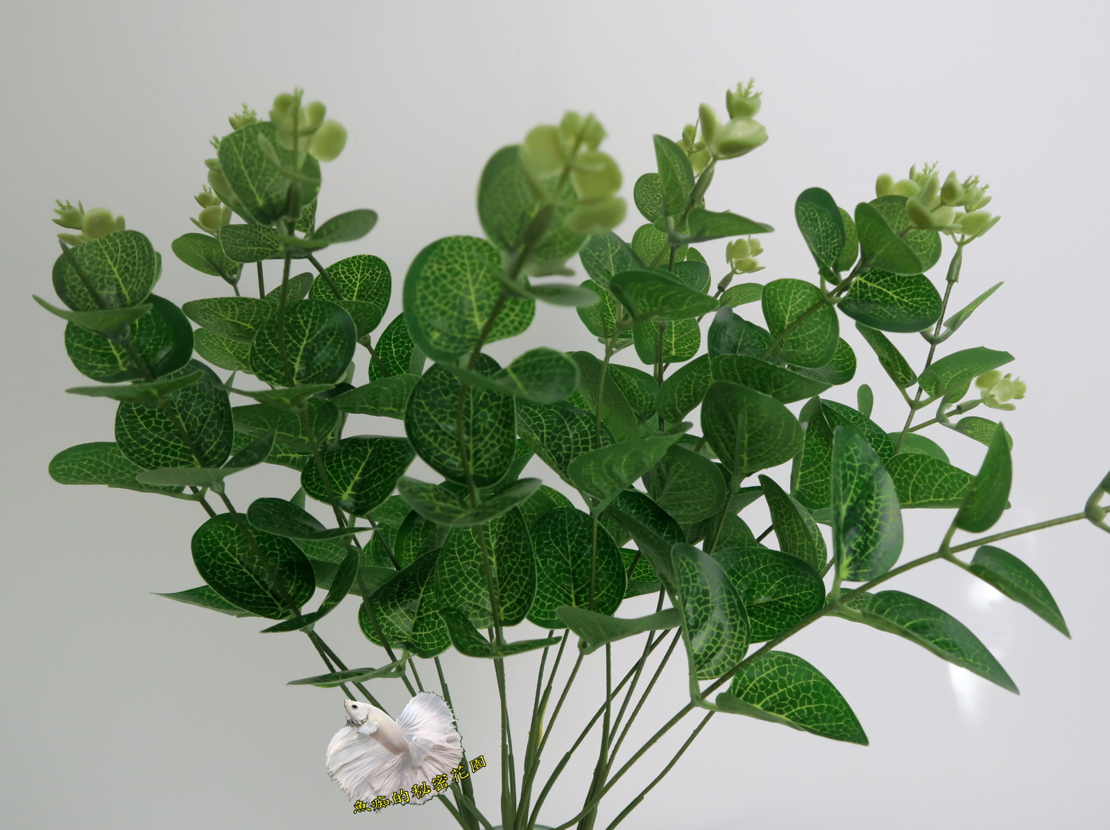 仿真4叉尤加利植栽假植物人造葉材插花.居家.店面.櫥窗擺飾.園藝