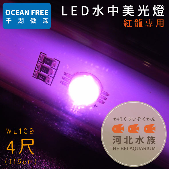 河北水族OF傲深LED水中美光燈紅龍4尺115cm WL109 LED水中燈水中LED燈四尺