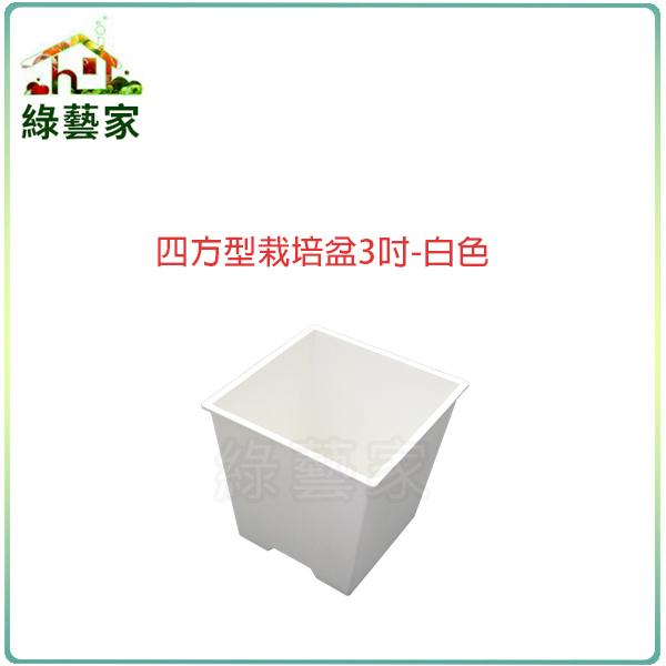 綠藝家005-D110-WI四方型栽培盆3吋-白色厚