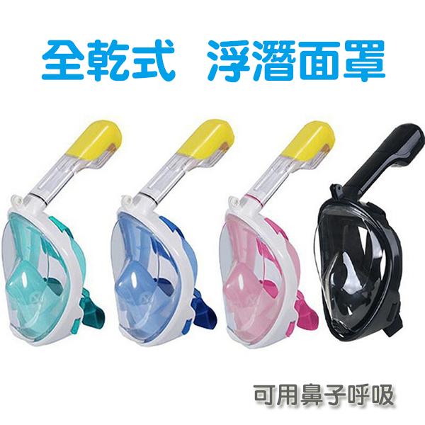 【拼團】全乾式浮潛面罩 潛水面罩裝備 呼吸管 防霧 成人 兒童