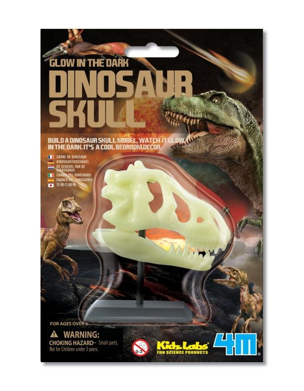 【4M 創意 DIY】Glow-In-The-Dark Dinosaur Skull 螢光恐龍骨頭