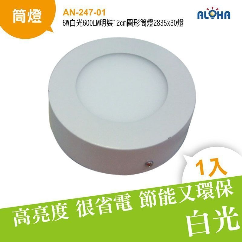 LED崁燈燈具吸頂燈6W白光600LM明裝12cm圓形筒燈2835x30燈AN-247-01